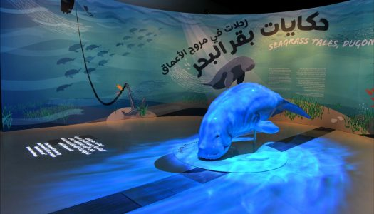 NATIONAL MUSEUM OF QATAR PRESENTS FIRST NATURAL HISTORY EXHIBITION ON THE DUGONG, THE PROTECTED MARINE MAMMAL NATIVE TO QATAR'S WATERS